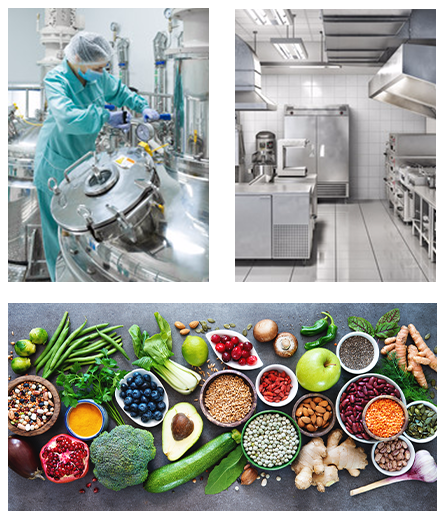 Food and Pharmaceutical Sectors